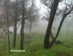 """بالصور: هذه ليست سويسرا .. انها مرتفعات الباحة """"جنة الله في أرضه"""""""