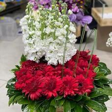 Flowers Season
