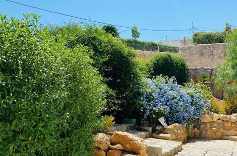 Jerash Summit Resort